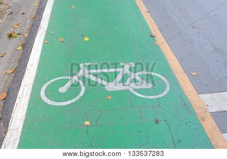 Bicycle symbol on road green bike lane (select focus symbol Bicycle)