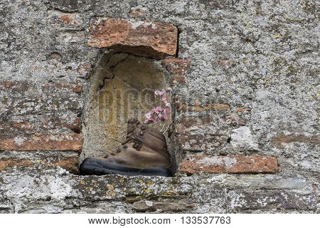 Old shoe with flowers in a niche in old wall in Mombaldone in Piedmont Italy.