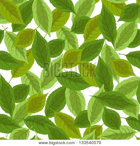 Seamless background with green leaves on a white background. Vector illustration.