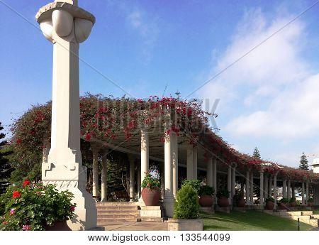 Telhado de flores, arquitetura, parque de la reserva, Peru