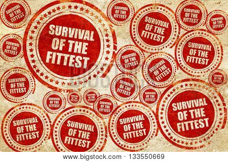 survival of the fittest, red stamp on a grunge paper texture