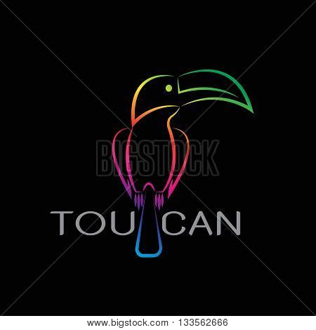 Vector images of toucan design on black background.