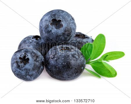 Blueberries with leaf isolated on white backgrund.