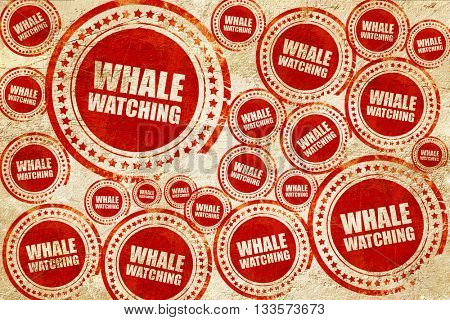 whale watching, red stamp on a grunge paper texture