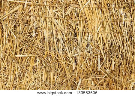 Abstract background of a straw tied with twine closeup