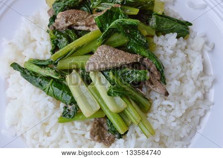 stir-fried Chinese cabbage with pork liver on plain rice