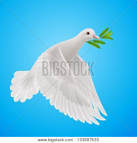Dove of peace flying with a green twig after flood