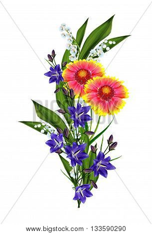 Bouquet of colorful flowers of Gaillardia. delicate flowers isolated on white background