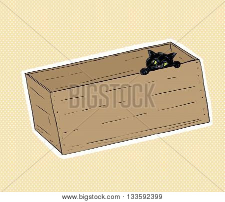 Black Cat Peeking From Inside A Box