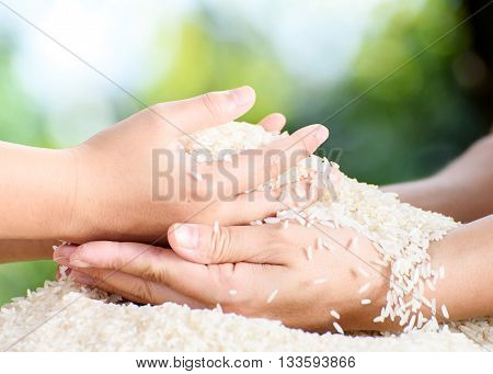 Jasmine Rice In Mother And Child Hands.