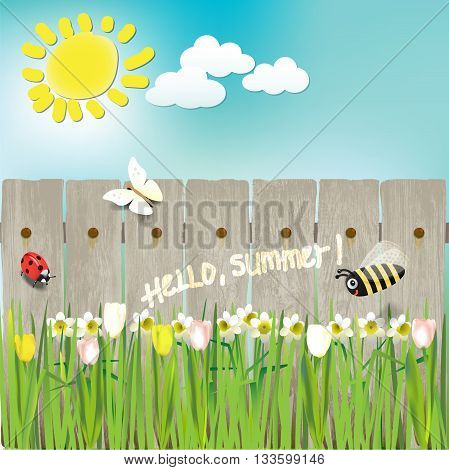summer flowers sun bee ladybug butterfly.vector illustration