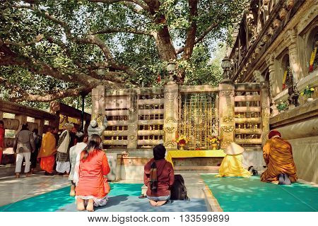 BODHGAYA, INDIA - JAN 9, 2016: People praying under the green Bodhi tree which the buddha became enlightened on January 9, 2016. Bodhgaya is a sites related to Buddha UNESCO World Heritage site