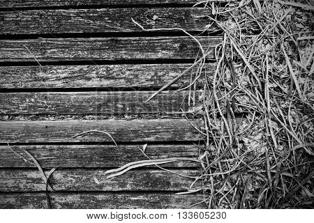Wooden deck run down by time and weather
