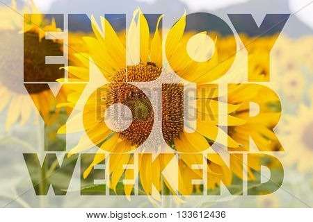 Enjoy your weekend word on sunflower background