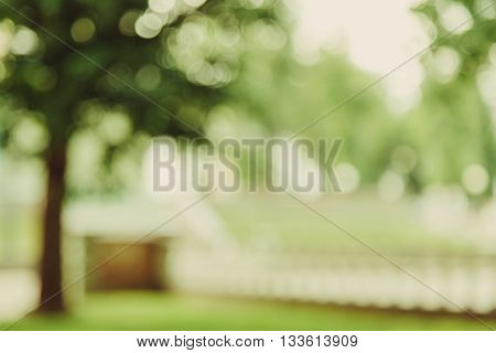 Blurred abstract green background of park alley copy space lens blur