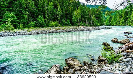 The turquoise water of the Lillooet River downstream of Nairn Falls in Nairn Falls Provincial Park in British Columbia, Canada