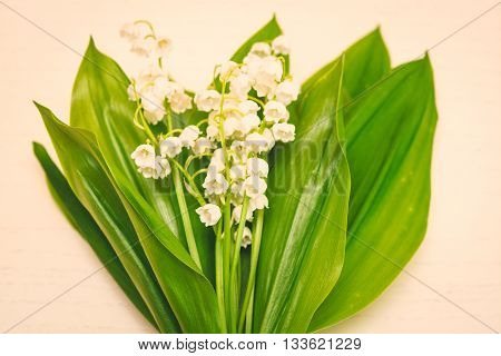 Bouquet Of Lilies Of The Valley On The Light Background. Spring Background. Summer Background