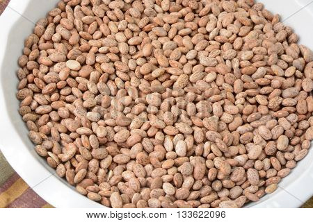 Raw dry uncooked pinto beans in white dish