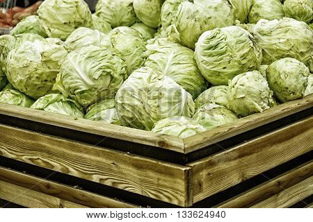 Group of green cabbages in a supermarket at Full frame, close up view of green cabbages. Healthy concept.
