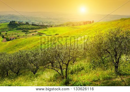 Beautiful Tuscany Landscape, Province Of Certaldo, Italy