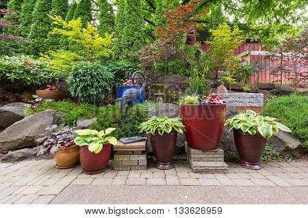 House Garden Backyard with hardscape and softscape with plants trees pavers stones colorful pots containers in landscaping