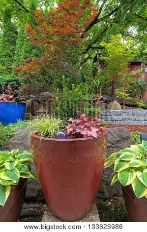 Garden Backyard colorful container pots with plants in landscaping