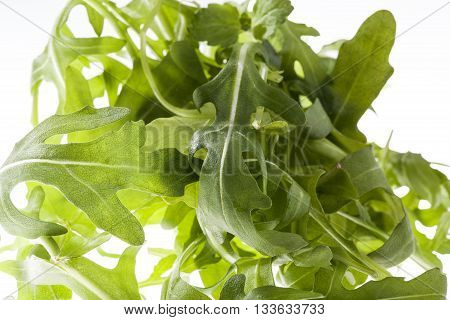 rucola leaves on a white background close up.