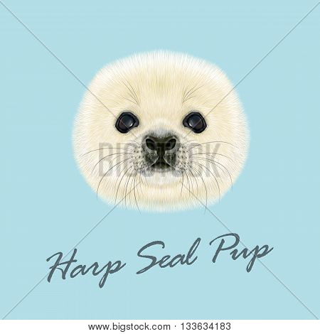 Vector Illustrated Portrait of Harp Seal Pup. Cute fluffy face of Harp Seal baby on blue background.