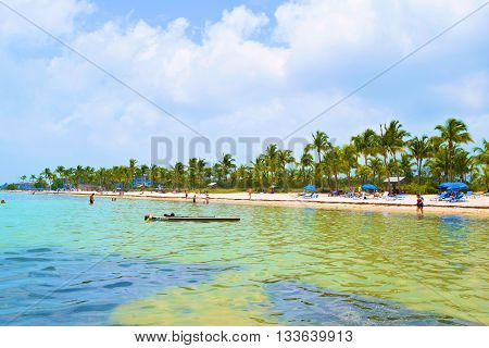 May 16, 2016 in Key West, FL:  People sunbathing and swimming taken from the shallow tropical waters at Smathers Beach where tourists and locals can relax at the tropical public beach with Palm Trees in Key West, FL