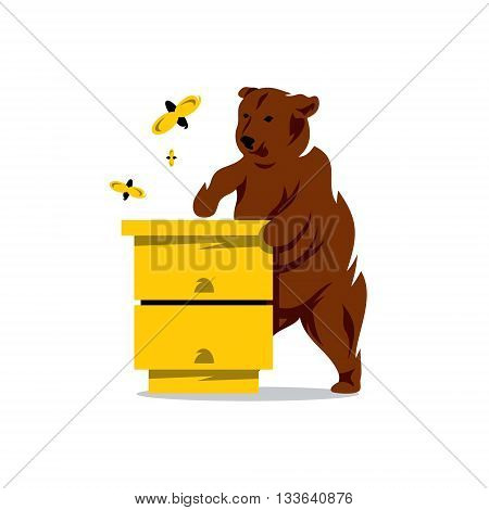 Wild beast trying to get in the apiary honey Isolated on a White Background