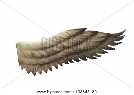 black wings isolated on a white background.