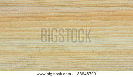 Plate of cedar - cedar tree wood texture