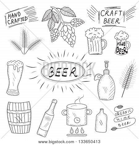 The set of hand drawn sketch of beer and home brewery. Home brewing crafted beer. Vector illustration