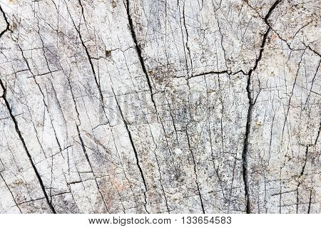 grey stone with cracks on the surface.