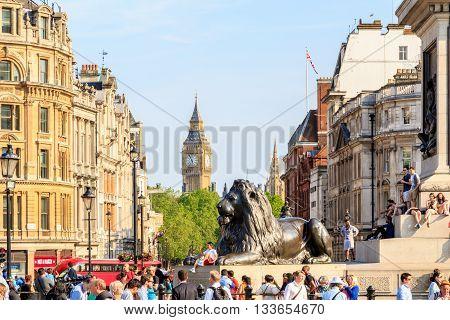 Lion Sculpture In Trafalgar Square