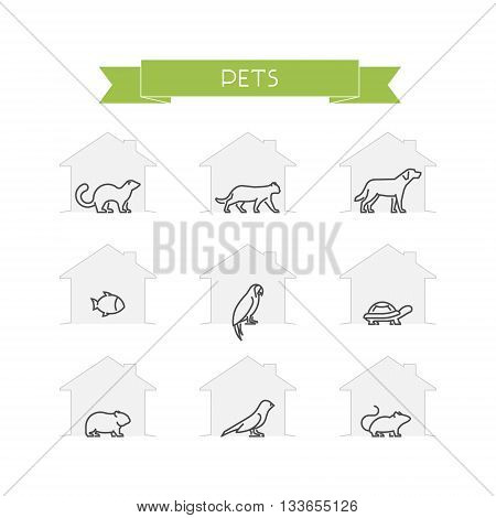 Line set of pets. Vector outline silhouettes domestic animals. Outline ferret cat dog fish and parrot. Linear turtle hamster canary and mouse isolated on white. Open path.