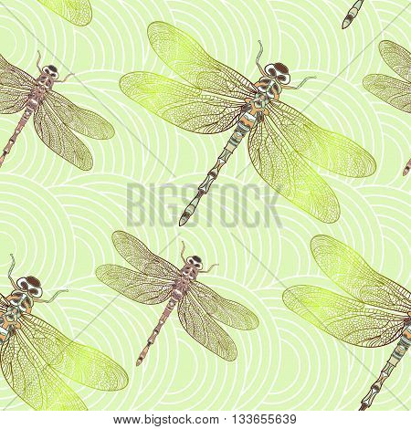 Seamless vector pattern with shiny dragonfly. Elegant light decoration. Can be used for wallpaper, pattern fills, web page background, surface textures. Vector indian design.