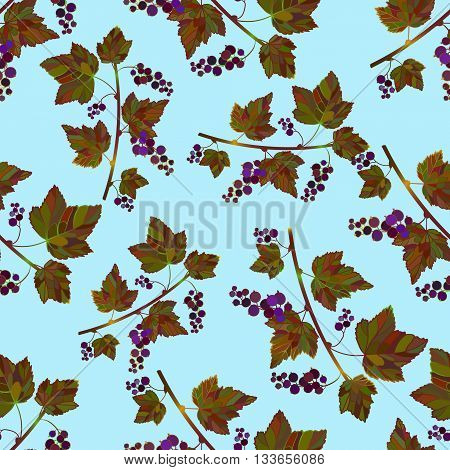 Colored currant seamless pattern. Vector currant background. Seamless pattern with colored hand draw graphic black currantberries. Vector blue berries template.