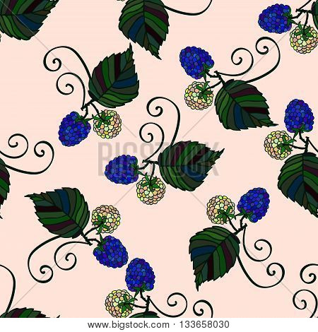Seamless pattern with hand drawn cartoon blackberries