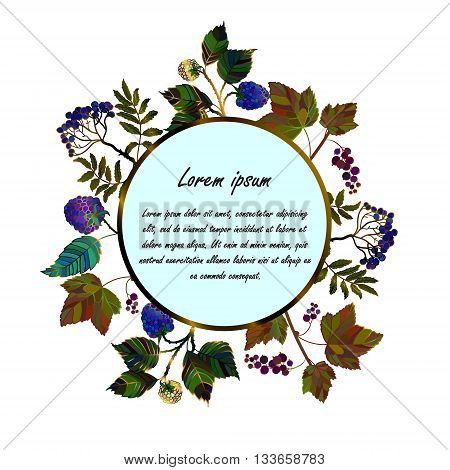 Frame with blue garden berries. Currant, rowan berries and blackberry. Vector template card for your design. Invitation, save the date. Vector frame of different black garden berries.