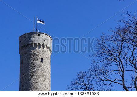 Flagpole with an Estonia flag waving on a tall historic tower