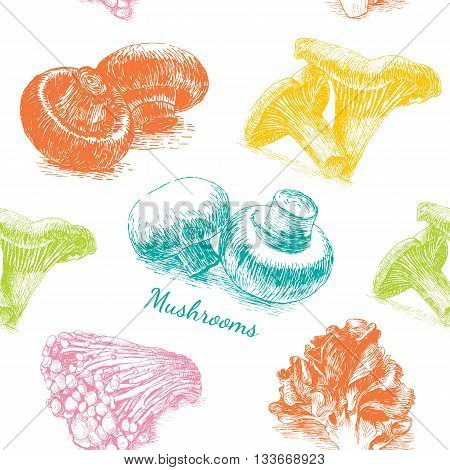 Vector mushrooms colorful background set 1. Illustrative sorts of mushrooms in seamless background