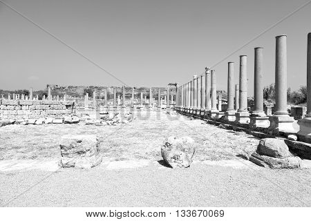 In  Perge Old Construction Asia Turkey The Column  And The Roman Temple