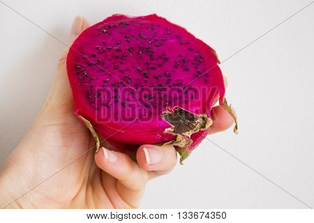 Exotic dragon fruit (Hylocereus monacanthus Pitahaya Pitaya) in woman hahd isolated on grey textured background. Bright red violet skinned fruit with violet flesh. Healthy food. Artistic retouching.