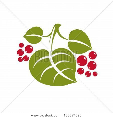 Spring leaf simple vector icon nature and gardening theme illustration. Stylized tree leaf with red seeds botany and vegetarian design element.
