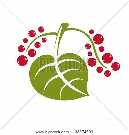 Single vector flat green leaf with red seeds isolated on white background. Herbal and botany symbol spring season natural icon.