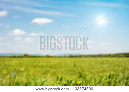 Green field under blue sky blur background. Defocused image blur of fresh green spring summer landscape with sun shining. Field of green grass and sky. Background with cloudy sky and grass.