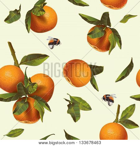 Vector citrus seamless pattern with orange and mandarin.