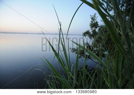 Calm river after rain and morning carelessness nature
