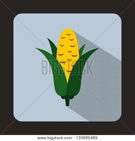 Corncob icon in flat style on a light blue background